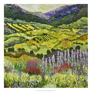 Where Flowers Bloom by Allan Friedlander