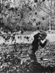 Boy Playing in a Pile of Autumn Leaves by Allan Grant