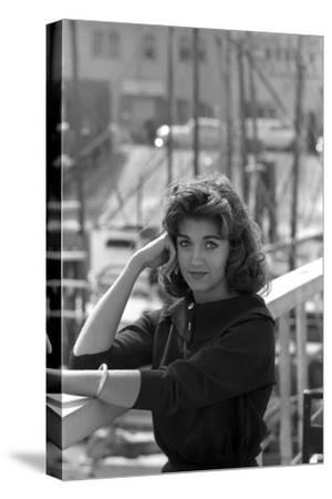 Judy Sayer, 18, San Jose, California