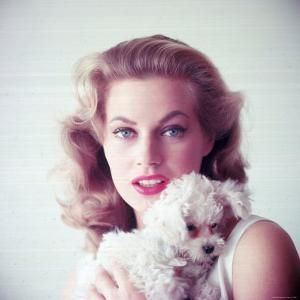 Portrait of Swedish Born Actress Anita Ekberg Holding Small Dog by Allan Grant
