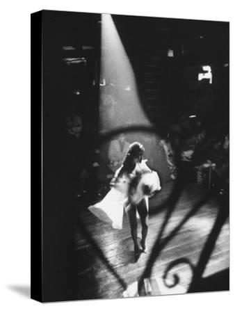 Sexy Dancer Performing in a Nightclub