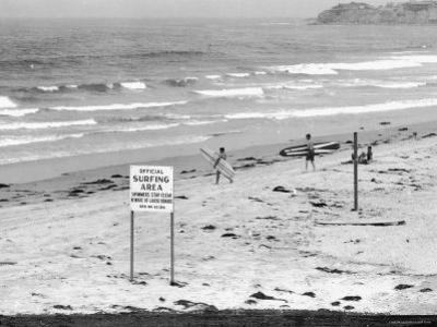 """Surfers Walking to Water Behind Sign Reading """"Official Surfing Area"""""""