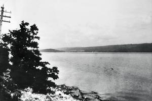 Alleged Image of Loch Ness Monster