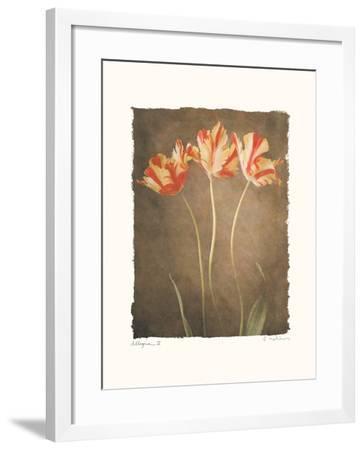 Allegria IV-Amy Melious-Framed Art Print