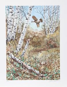 In the Birches by Allen Friedman