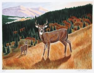 Morning Meadow by Allen Friedman