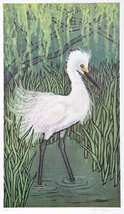 Snow Bird by Allen Friedman