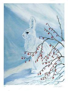 Snow Rabbit by Allen Friedman