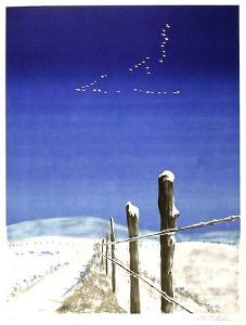 Snowy Fence by Allen Friedman