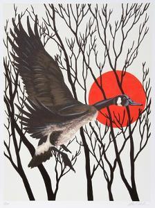 Sunset Goose by Allen Friedman