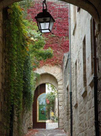 https://imgc.artprintimages.com/img/print/alley-to-garden-languedoc-roussillon-france_u-l-p4hpy20.jpg?p=0