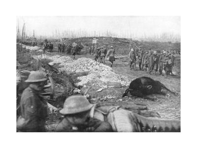 https://imgc.artprintimages.com/img/print/allied-troops-and-german-prisoners-at-the-menin-road-near-ypres-belgium-30-october-1917_u-l-ptvyie0.jpg?p=0