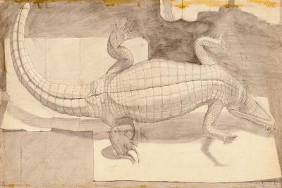 Alligator, 1948-Evelyn Williams-Giclee Print