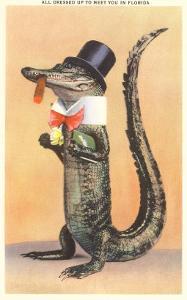Alligator in Top Hat