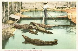 Alligator Joe, Palm Beach, Florida