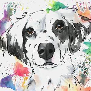 Brilliant Spaniel Mix Dog by Allison Gray