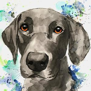 Cool Blue Black Lab by Allison Gray