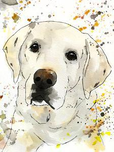 Cooper English Lab by Allison Gray