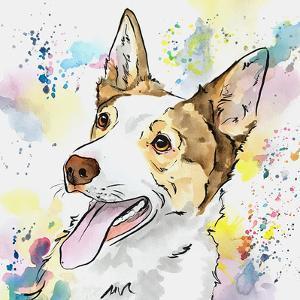 Pastel Colors Australian Shepherd by Allison Gray