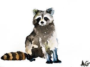 Raccoon by Allison Gray