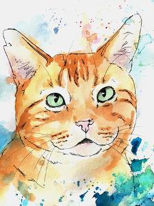 Sea Splashes Tabby Cat by Allison Gray