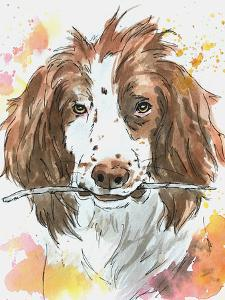 Spaniel Playing Fetch by Allison Gray