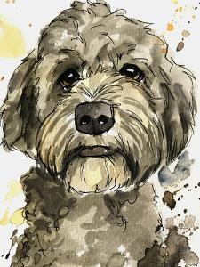 Stoic Ashy Labradoodle by Allison Gray