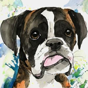 Tongue Out Tuesday Boxer by Allison Gray