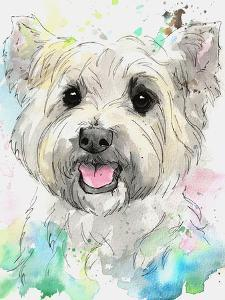 West Highland Terrier by Allison Gray