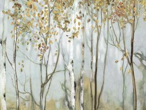 Birch in the fog II by Allison Pearce