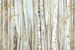Birchscape I by Allison Pearce