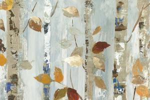 Leaves on Birch by Allison Pearce