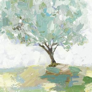 Pear tree by Allison Pearce