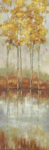 Reflections II by Allison Pearce