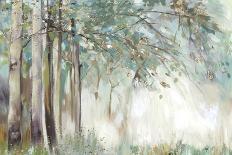 Forest of Light-Allison Pearce-Framed Art Print
