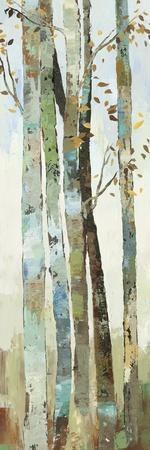Towering Trees I
