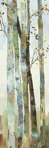 Towering Trees I by Allison Pearce