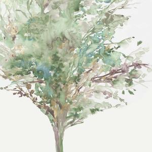 Tree Teal III by Allison Pearce