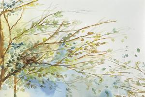 Windblown by Allison Pearce