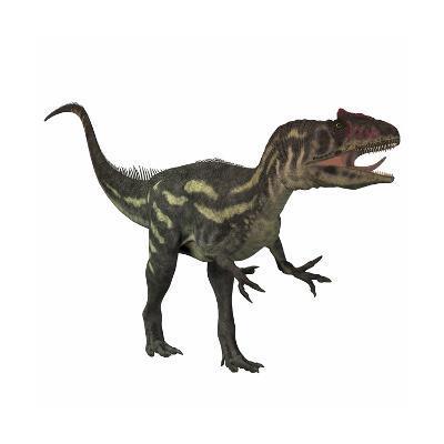 Allosaurus, a Prehistoric Era Dinosaur--Art Print