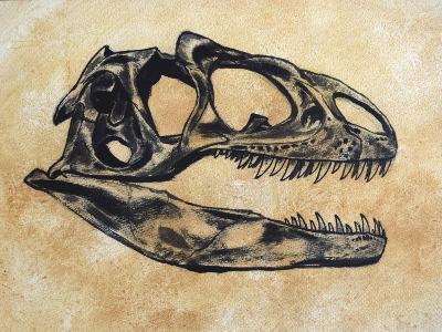 Allosaurus Dinosaur Skull-Stocktrek Images-Art Print