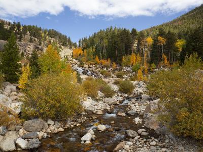Alluvial Fan, Rocky Mountain National Park, Colorado, USA-Jamie & Judy Wild-Photographic Print