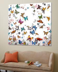 Papillon by Allyson Allyson Fukushima