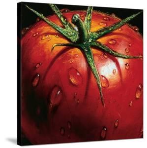Tomato by Alma'ch