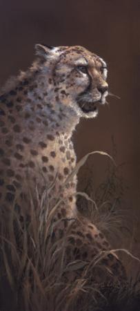 The Silent Hunter