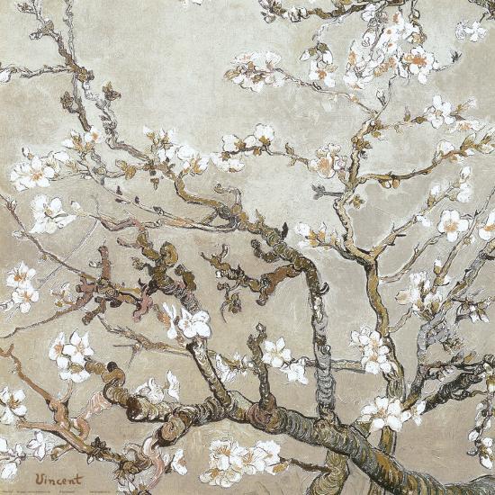 Almond Branches in Bloom, San Remy, c.1890 (tan)-Vincent van Gogh-Art Print