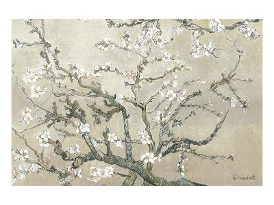 Almond Branches in Bloom, San Remy, c.1890 (tan)-Vincent van Gogh-Premium Giclee Print