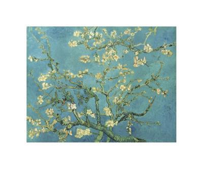 https://imgc.artprintimages.com/img/print/almond-branches-in-bloom-san-remy-c-1890_u-l-f4e5eu0.jpg?p=0
