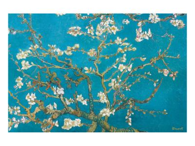 https://imgc.artprintimages.com/img/print/almond-branches-in-bloom-san-remy-c-1890_u-l-f4sr6j0.jpg?p=0