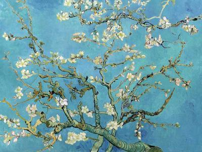 Almond Branches in Bloom, San Remy, c.1890-Vincent van Gogh-Art Print